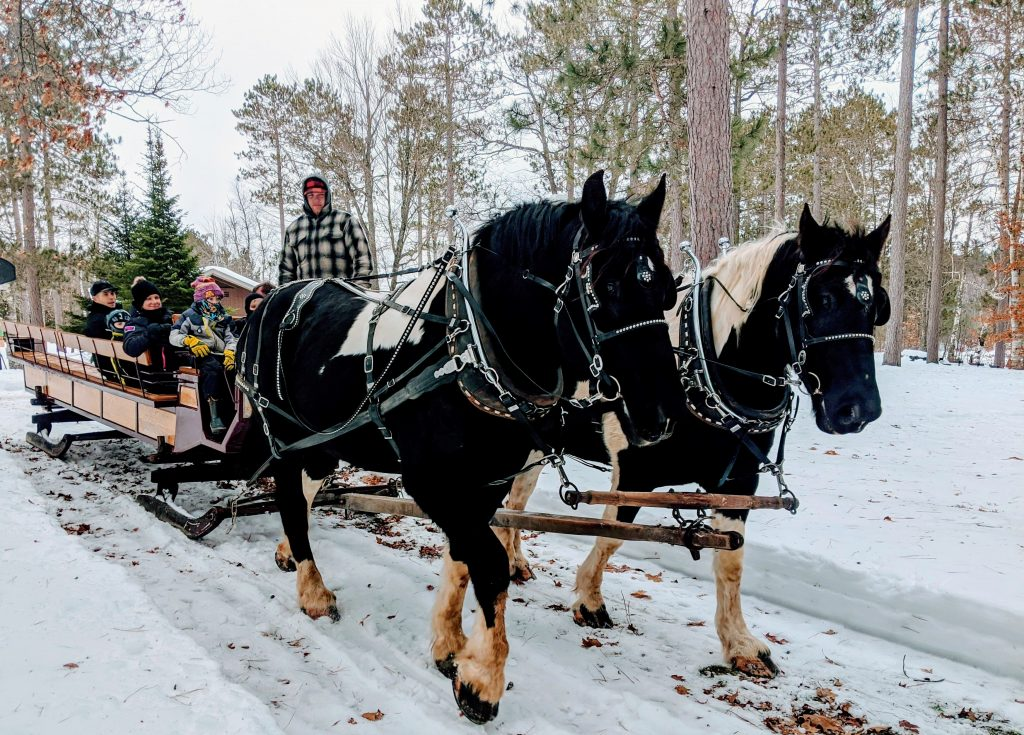 Discovery Center winter sleigh rides